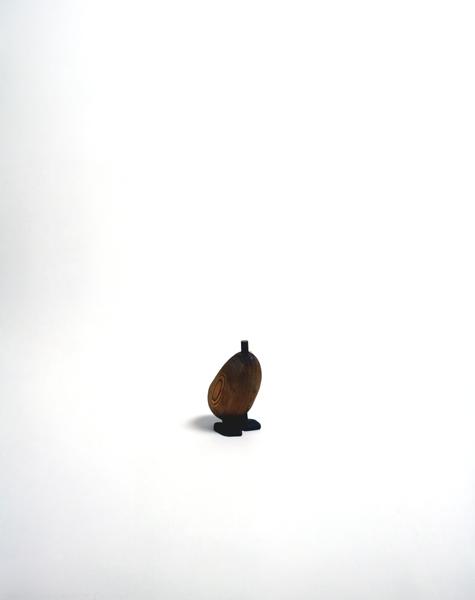 Duck 96