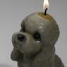 Candle dog 08