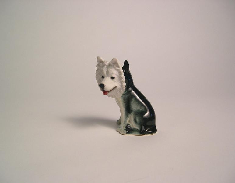 Dog 04