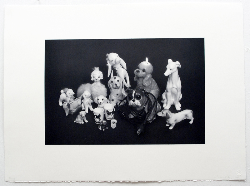 Dogs 2012