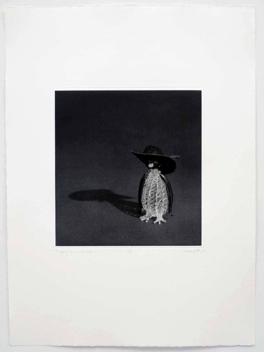 Pinguino con sombrero negro  2009