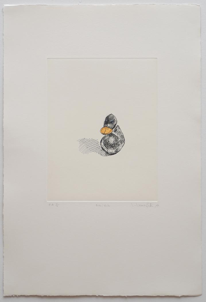 Pato  pato  07